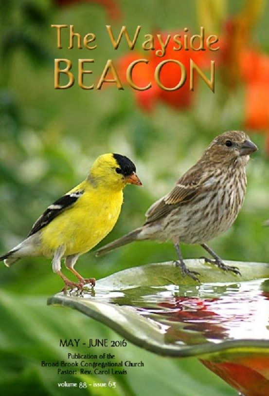 May – June 2016  Wayside Beacon