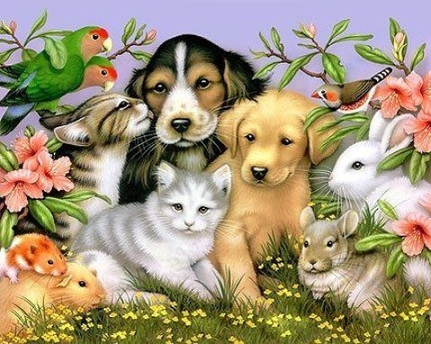 Blessing of the Animals October 18th